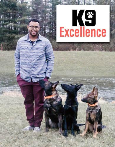 Professional Dog Training Morton Peoria Il K9 Excellence